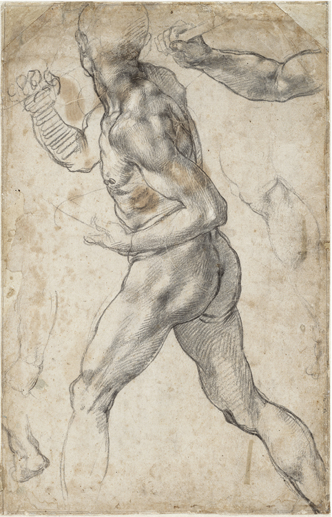 Study of a striding male nude for the Battle of  Cascina, 1504 or 1506. Black chalk; 40.4 x 25.8 cm