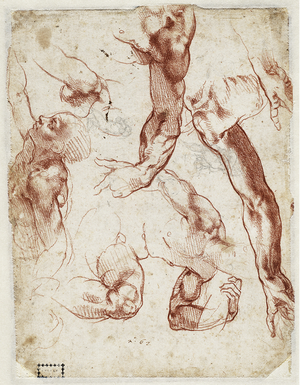 Studies of figures and limbs; figure sketches for the Sistine Chapel ceiling, 1511. Red chalk, leadpoint; 27.9 x 21.4 cm