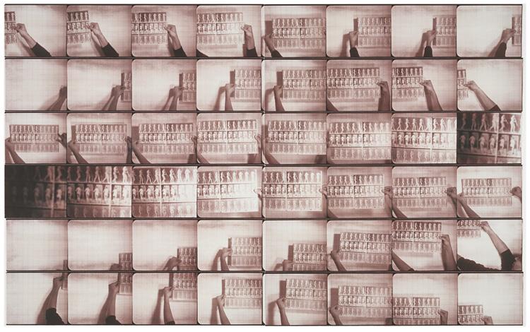 Muybridge in Motion 1979. Mark Schwartz (American, 1956–2014). Gelatin silver prints, gold-toned; 40.6 x 50.6 cm. Gift of Herbert Ascherman Jr., 2009.420