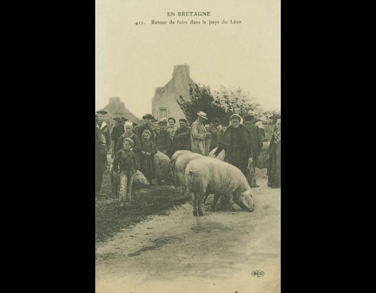 Van Gogh and Cezanne traveled to Brittany (Bretagne) for inspiration. Via postcard: En Bretagne. Retour de foire dans le pays du Léon. IML 958806