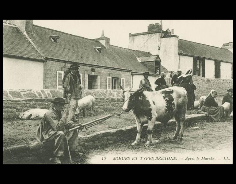 Van Gogh and Cezanne traveled to Brittany (Bretagne) for inspiration. Via postcard: Mœurs et Types Bretons. Après le Marché. IML 958804