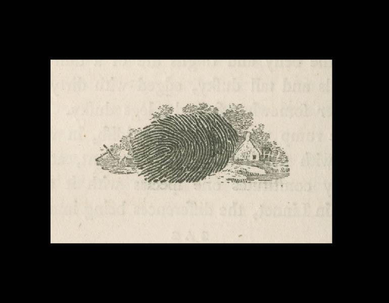 British Birds: Vol 1, Land Birds, page 180