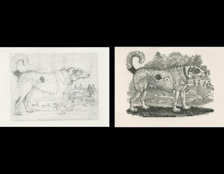 "Thomas Bewick, 1972, Plate 9 ""The Newfoundland Dog from the Quadrupeds"""