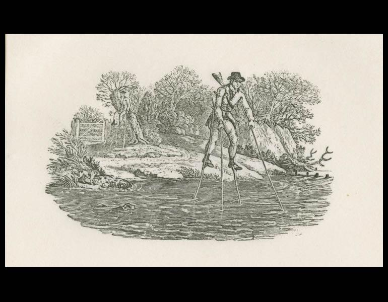 "Thomas Bewick, 1972, Plate 4 ""A vignette from the Water Birds"""