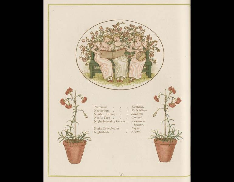 Language of Flowers, page 30. IML 958987
