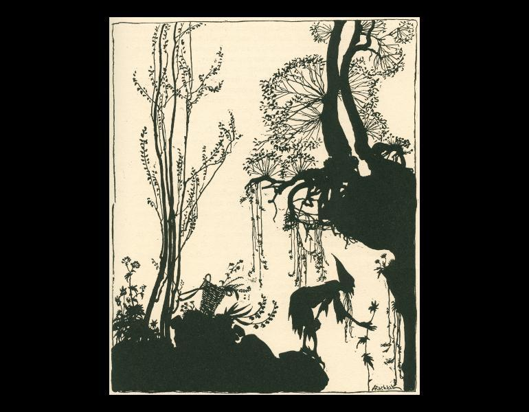 """Page 43, """"[Merlin] went to mysterious places in the woods, and gathered strange herbs in the dark of the moon."""" by Arthur Rackham. In Evans, C. S. (Charles Seddon), 1883-1944. The sleeping beauty. Philadelphia: J. B. Lippincott, 1920. Rare Books. Call No. PZ8.E92 S54 1920, IML 986141."""