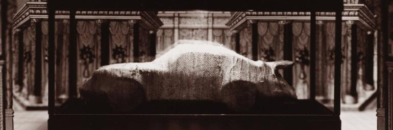 Mummified Porsche, from the Area of the Tomb of Horemheb, Saqqara, Egypt (R3/=) (detail), 1986. Patrick Nagatani (American, b. 1945). Toned gelatin silver print; 15.1 x 20 cm. The Cleveland Museum of Art, Gift of George Stephanopoulos 2012.340.