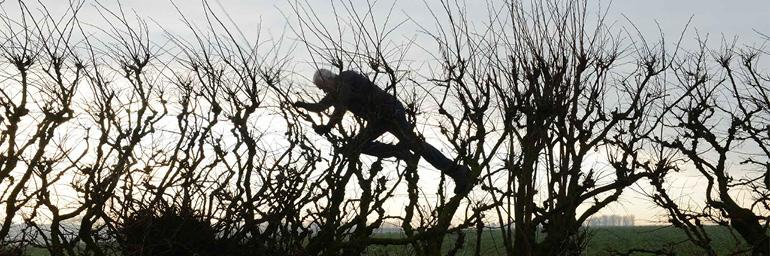 Image from Leaning into the Wind: Andy Goldsworthy