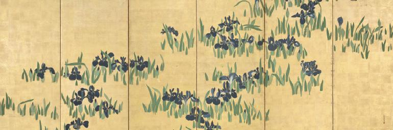 Irises (detail), 1700s. Watanabe Shiko (Japanese, 1683–1755). Six-fold screen; ink and color on gilded paper. Gift of The Norweb Foundation 1954.603.1
