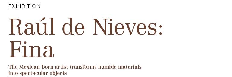 Raúl de Nieves: Fina