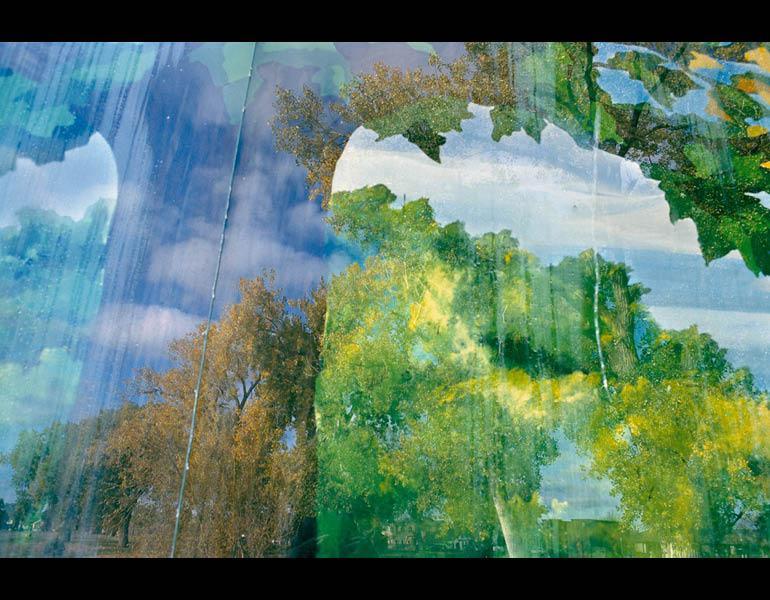 Cottonwoods, from My Dakota, 2005–11. Rebecca Norris Webb (American, born 1956). Type- C Photographic Print, 26  x 35 ½ in. Courtesy of the artist.