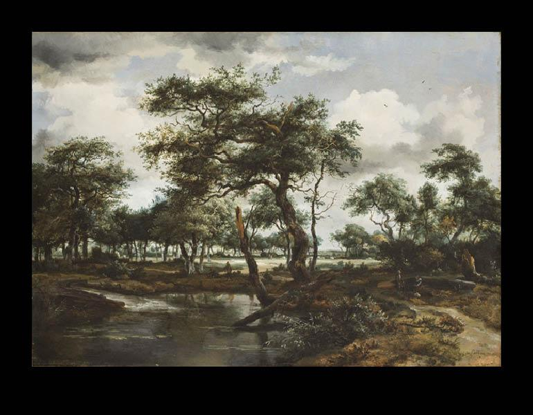 A Pond in the Forest, 1668. Meindert Hobbema (Dutch, 1638–1709). Oil on wood; 60 x 84.5 cm. Allen Memorial Art Museum, Oberlin College, Oberlin, Ohio, Mrs. F. F. Prentiss Bequest 1944.52