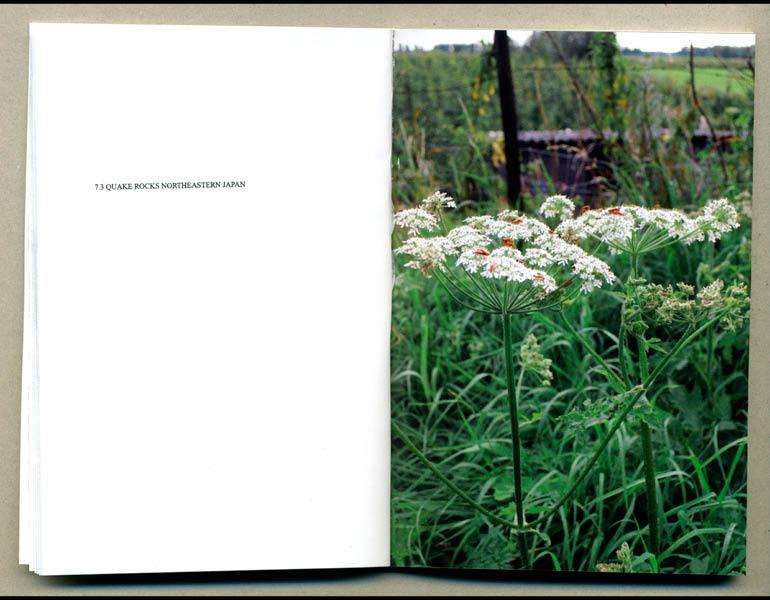 Another World, 2011. Elisabeth Tonnard (Dutch, born 1973). Full colour digital print; 8.73 x 12.70 cm (closed). Courtesy of the artist
