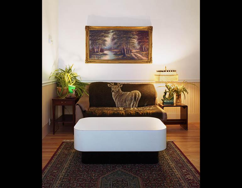 Untitled Interior (deer couch) from Living Arrangements, 2010. Sarah Malakoff (American, born 1972). Digital offset printing, digital C-print; 19.69 x 24.77 cm. Courtesy of the artist. Copyright © 2011 by Sarah Malakoff