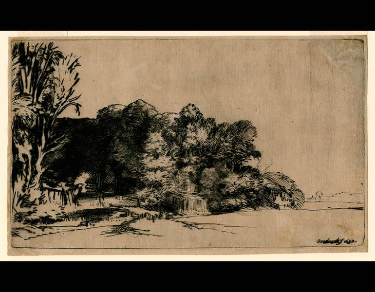 Clump of Trees with a Vista, 1652. Rembrandt van Rijn (Dutch, 1606–1669). Drypoint on paper; 12.4 x 21.1 cm. The Morgan Library & Museum, Acquired by J. Pierpont Morgan, 1900. Photo: Graham S. Haber, 2011