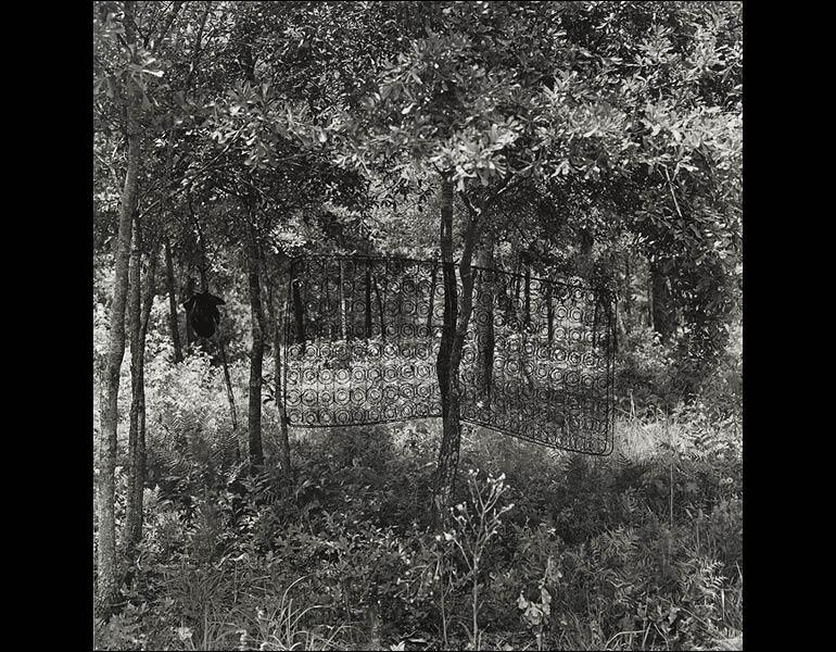 Untitled (Box Spring in Tree), from Sea Islands Series, 1991–92. Carrie Mae Weems (American, born 1953). Gelatin silver print; 20 x 20 in. Whitney Museum of American Art, New York, Gift of Carrie Mae Weems and P.P.O.W. 97.97.1. © Carrie Mae Weems. Photography by Robert Gerhardt.