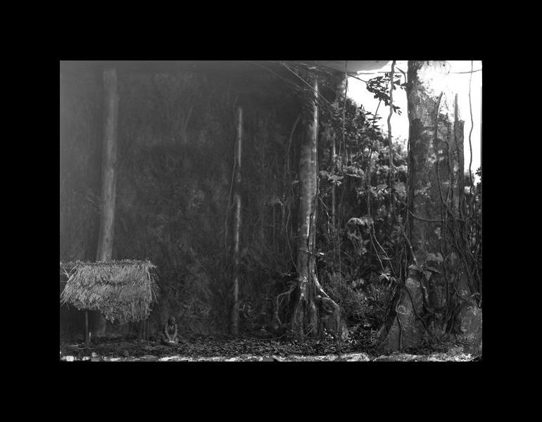 Model: Jungle (Tropical), Children's Museum, 1920. IML 966563
