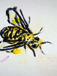 """Image from """"Bee Box"""" part of Best of Conscious Cartoons Animation Festival"""