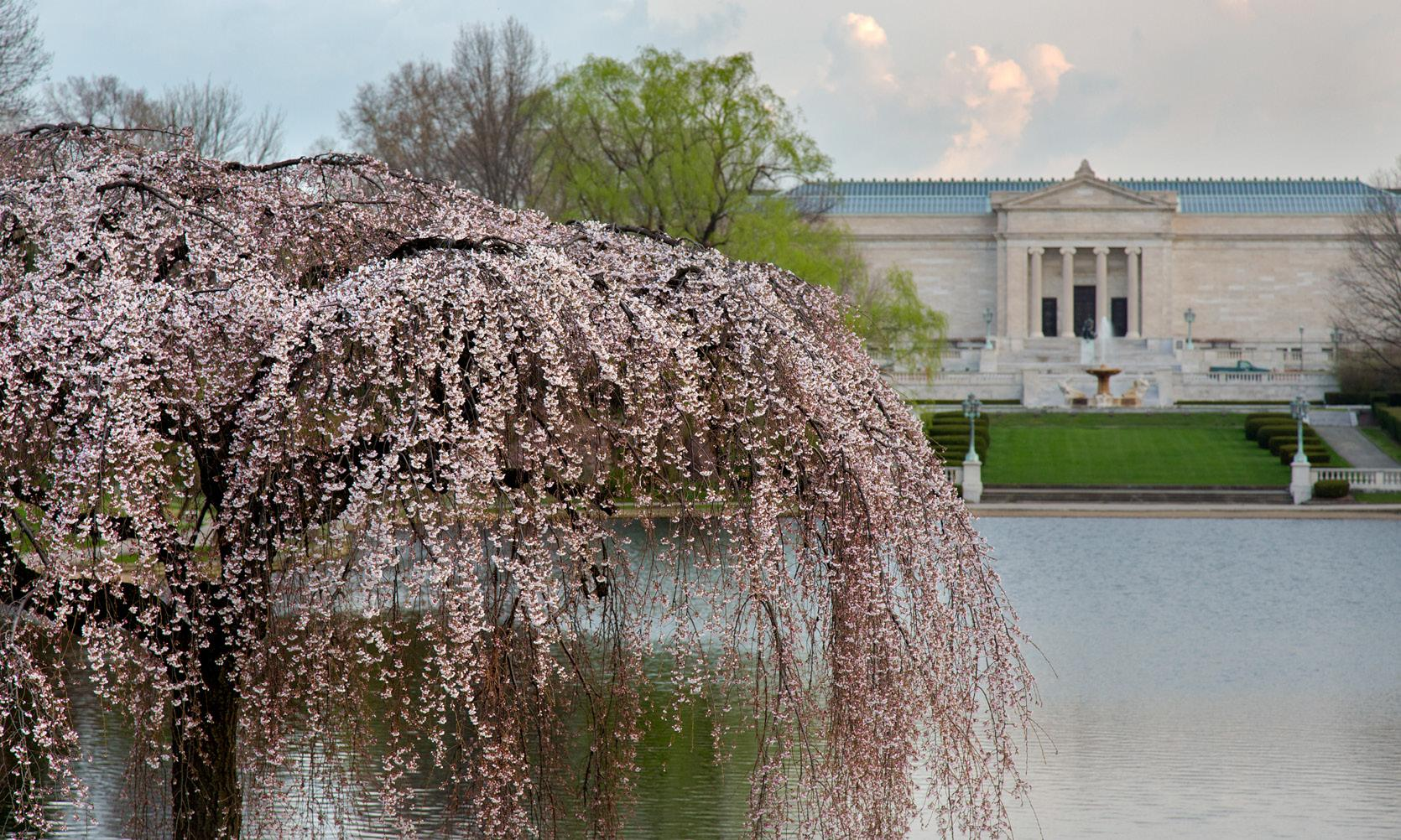 the museum in springtime