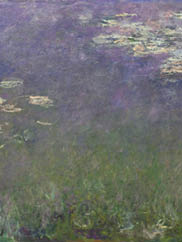 Monet Waterlilies CMA